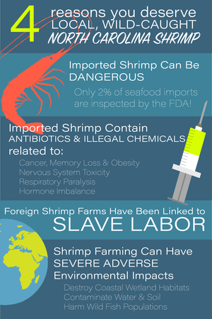Imported Shrimp Infographic by B Miller